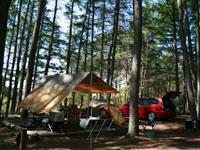 大自然に抱かれたキャンプ場ウッドペッカー・写真