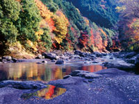 福士川渓谷・写真