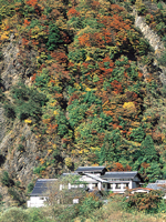 奈良田温泉・写真