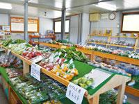 パノラマ市場・写真