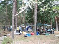 須砂渡憩いの森オートキャンプ場・写真