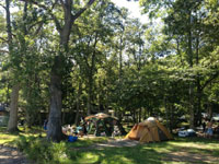 湖楽園キャンプ場