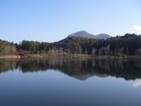 大池市民の森「大池キャンプ場」