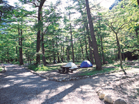 森のリゾート小梨・写真