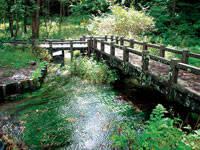 姫川源流自然探勝園・写真