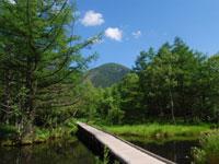 御泉水自然園・写真