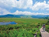 八島ヶ原湿原・写真