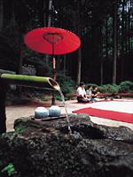 猿庫の泉・写真
