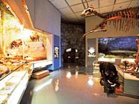 飯田市美術博物館・写真