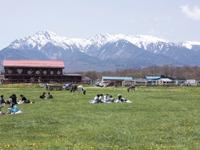 滝沢牧場・写真