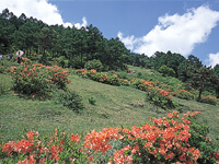 湯の丸高原(長野県)