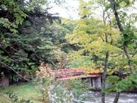 中野紅葉山・写真