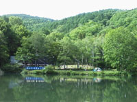 ごんげん池・写真