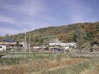 松井農園・写真