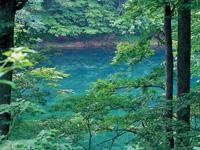 蔦の七沼・写真