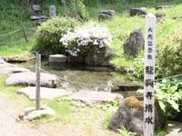龍興寺清水・写真