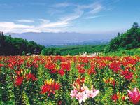 富士見高原リゾート・写真