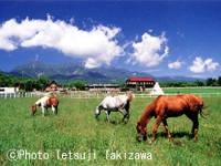 滝沢牧場キャンプ場・写真