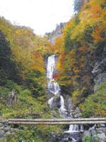 唐沢の滝・写真