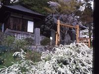 長楽寺・写真