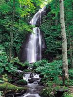 雲井の滝・写真