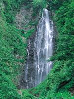 くろくまの滝コース