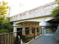 蓬莱橋・写真