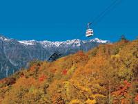 奥飛騨温泉郷(平湯新穂高)の紅葉・写真