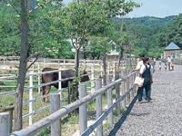 岐阜市畜産センター公園・写真