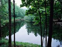 杣ヶ池・写真