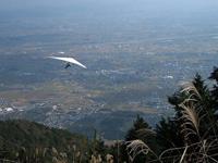 池田の森・写真