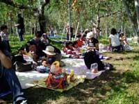 フルーツパーク黒内果樹園・写真