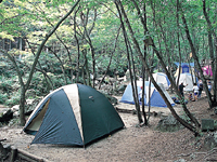 長者の里キャンプ場・写真