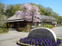 道の駅 日本昭和村・写真