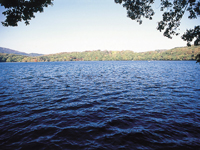 一碧湖・写真