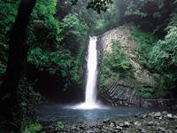 浄蓮の滝・写真