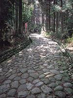 旧東海道の石畳