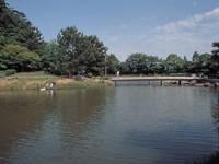 佐鳴湖公園・写真