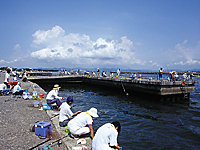 新居弁天海釣公園・写真