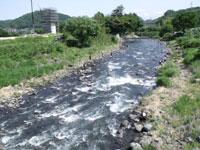 狩野川の釣り