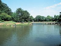 佐鳴湖・写真