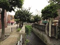 糸川遊歩道・写真