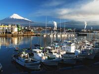 田子の浦港・写真