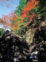 滝ノ谷不動峡の紅葉・写真