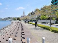 ぐるっと浜名湖サイクリング「ゆ〜りん」・写真