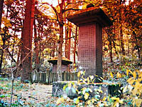 会津藩主 松平家墓所・写真
