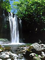 乙女の滝・写真