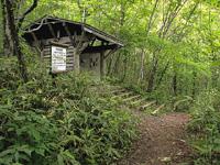 支笏湖野鳥の森・写真