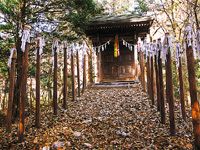 湯殿山神社・写真