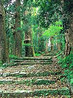 熊野古道・写真